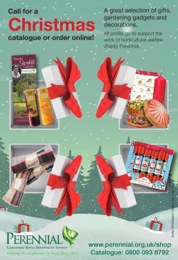 Christmas Catalogue Advert